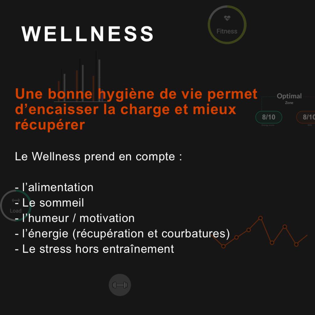 qu'est ce que le wellness