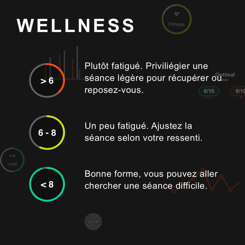 indice de wellness